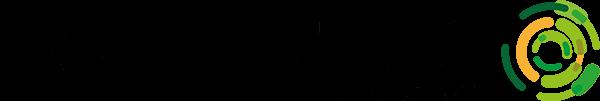Inspectus logo